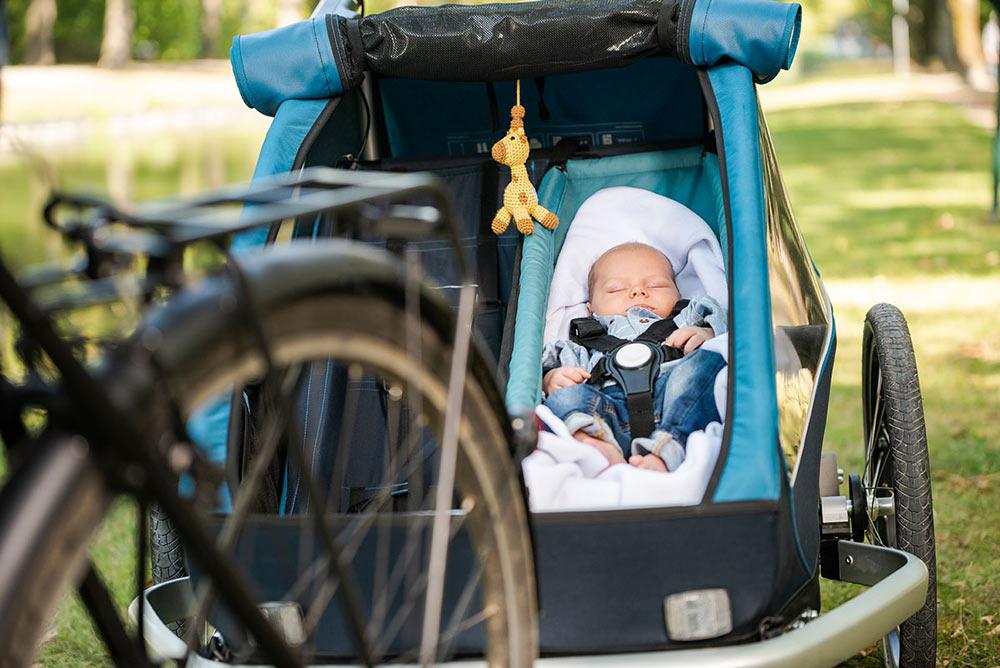 Croozer KidPlus Bike Action
